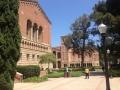 campus ucla (3)